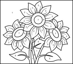 sunflower printable color by number page - Coloring Pages By Number