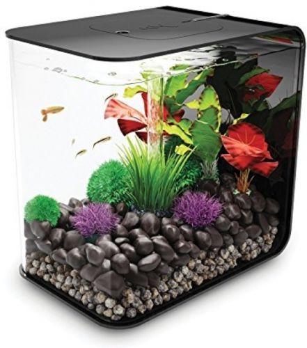 8 Gallons Fish Tank