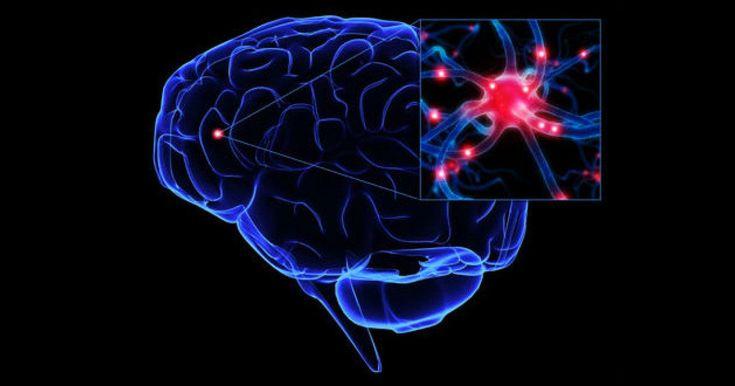 La memoria selectiva es un mecanismo de nuestra memoria para desechar recuerdos que no son importantes para nosotros, y conservar los significativos.
