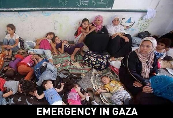 Eid Mubarak , Donate to help us provide food to those who have lost everything at http://www.alnasfoundation.org/donate #gaza #eid pic.twitter.com/St2b88VJY5
