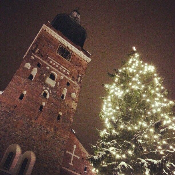 Turun tuomiokirkko i Turku, Länsi-Suomen Lääni