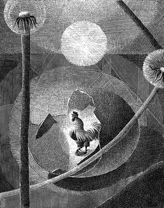 Black and White Illustrations for Children by Alenka Sottler