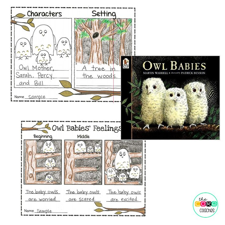 "Teach young students about characters' feelings with ""Owl Babies."""