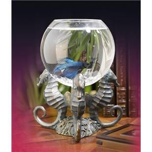 46 best images about everything betta homes o for Cheap betta fish