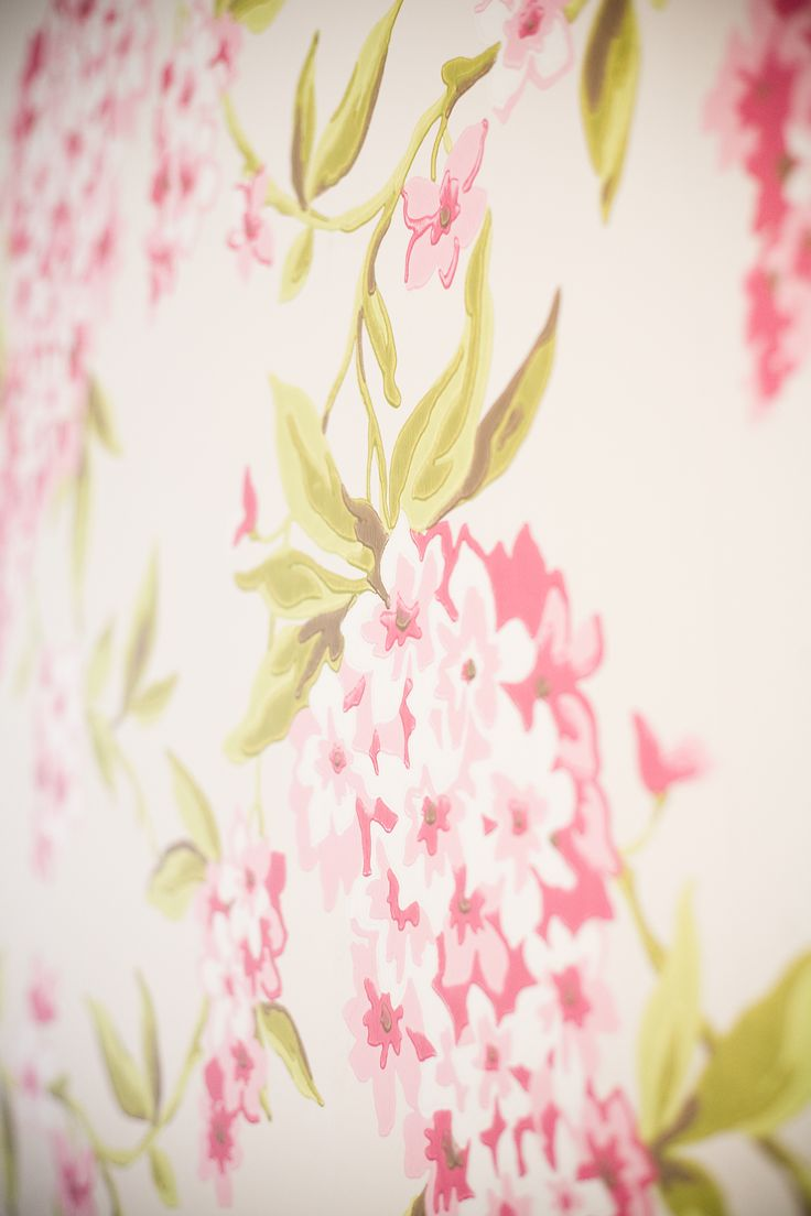 Close up of the wallpaper - wallpaper bought from Guthrie Bowron - Wellington