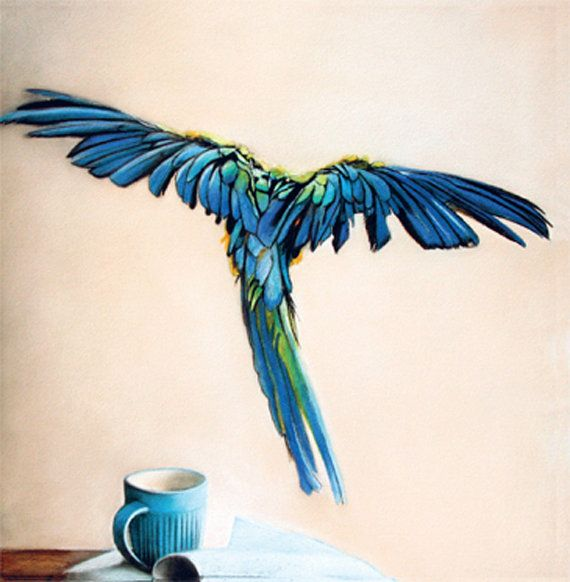 blank card  macaw bird blue feathers  flying by KatkasArtStudio