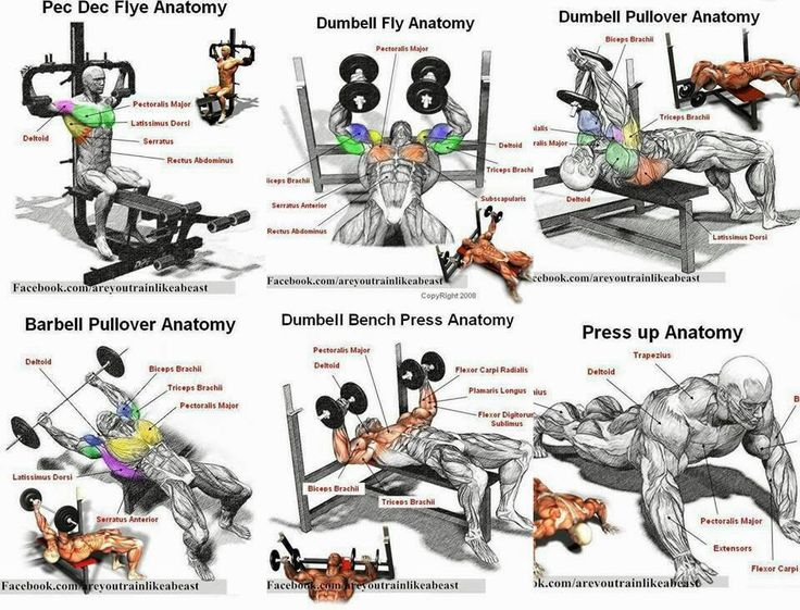 Chest workout techniques | Body | Pinterest