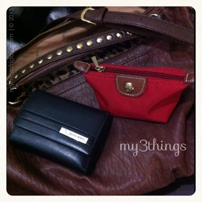 Vieta bag, Braun Buffel wallet, Longchamp coin purse