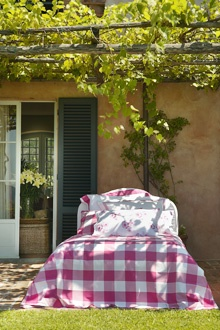 Bellora beautiful verandah covered in grape vines not sure why there is a bed in the picture but the vine idea I love