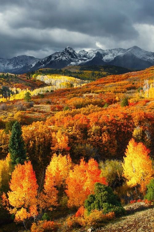 """Autumn in Montana... amazing.♥<< I'm a native Montanan... This """"autumn"""" you speak of only exists for less than a few weeks, a month if you're lucky. A few days if you're not."""