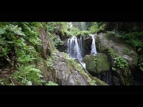 Krátký film o vodě - YouTube