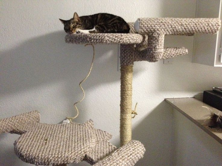 This scratch post is the only reason I would get a cat. DIY 'Star Trek' cat tree with carpeted Enterprise via @CNET