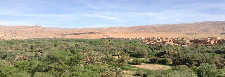MOROCCO DESERT TOURS- Morocco camel tours | Marrakech Day tours |Marrakech Camel trips