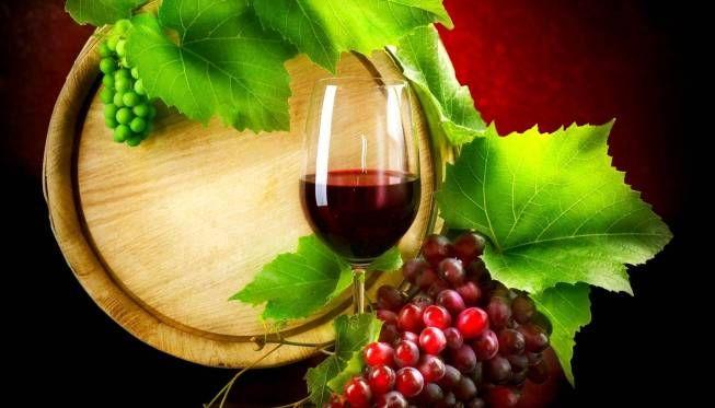 La viticoltura #MadeinItaly deve affrontare la #sfida nel #vigneto, ove c'è spazio di interventi e miglioramenti grazie al 'matrimonio' con la #ricerca e l'innovazione scientifica e tecnologica