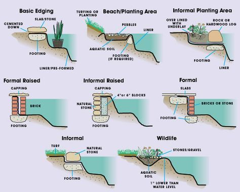 pond edging methods how to make edging level and various types of aquatic plants and