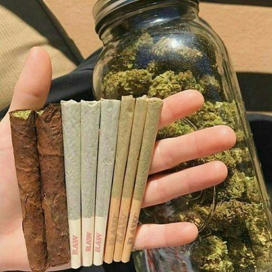 Как собирать сигарет для конопля испарители марихуаны