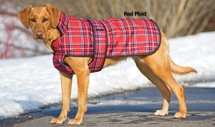 Her new coat