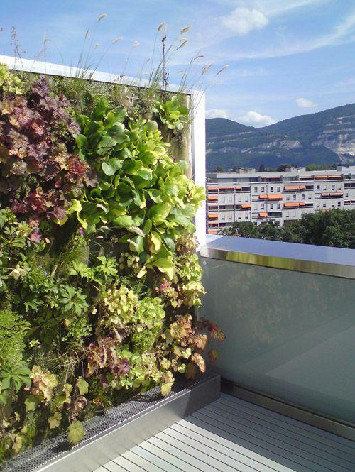 Projekt: Aménagement d'une terrasse en attique - La Touche Verte