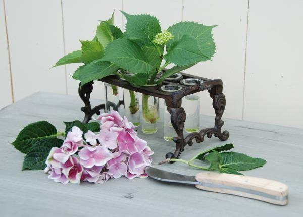 Öntöttvas virágtartó állvány, gyökereztető 8 darab üveg kémcsővel.