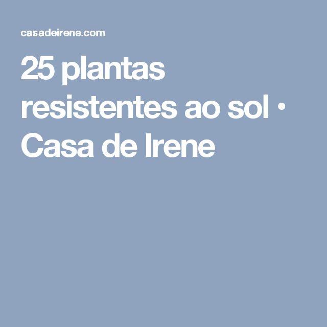 25 melhores ideias de plantas resistentes ao sol no - Plantas de exterior resistentes ...