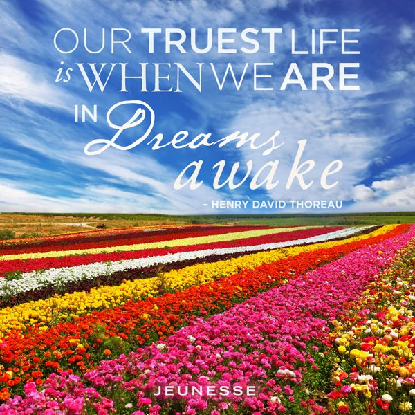 Our truest life is when we are in Dreams awake.  -Henry David Thoreau