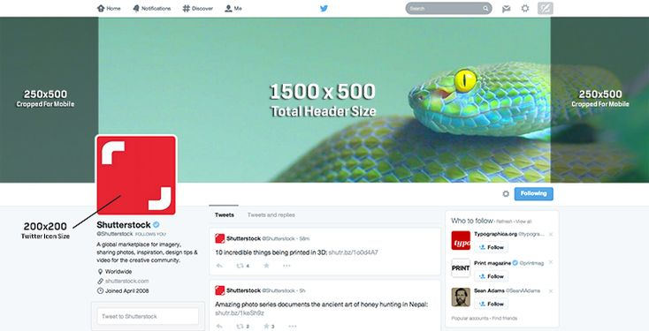 How to Choose a Perfect Cover Photo for Twitter's New Profiles