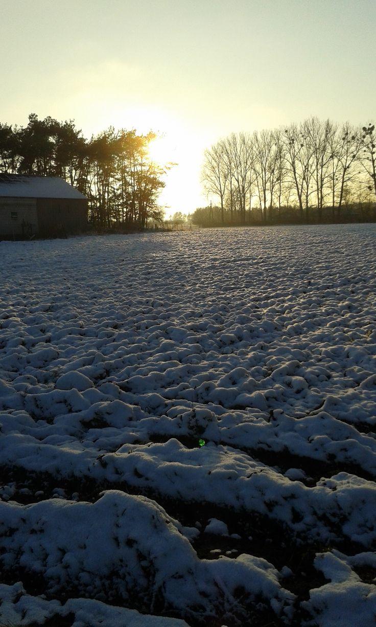 Wieś Marynino w zimie. / Marynino village in winter. | Marynino (Mazovia Voivodeship), Poland