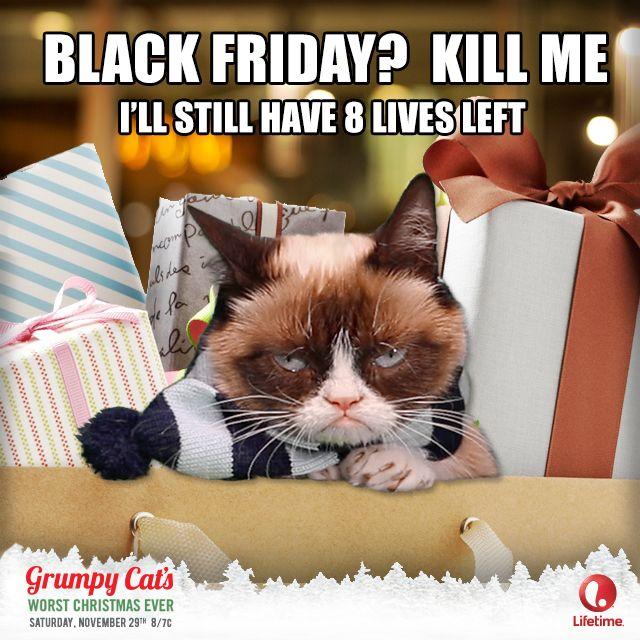 Grumpy Cat Birthday Youtube: 25+ Best Ideas About Grumpy Cat Christmas On Pinterest