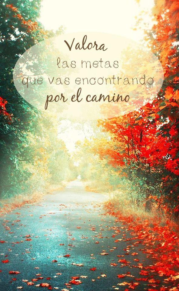 """""""Valora las metas que vas encontrando por el camino"""" #love #amor #frasesDeAmor http://www.unpedacitodecielo.com/frases-de-amor/"""