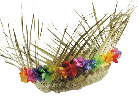 Chapeau de paille Hawaï : Deguise-toi, achat de Chapeaux