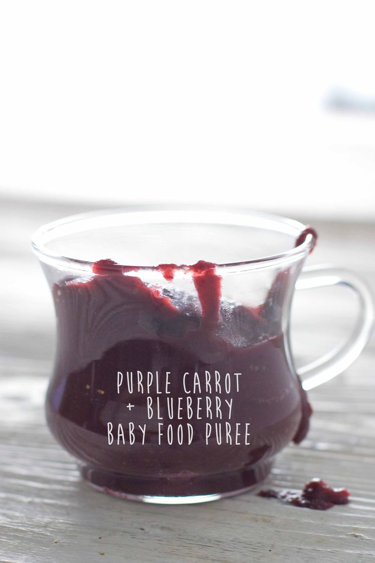 BLUEBERRY BABY FOOD COMBOS