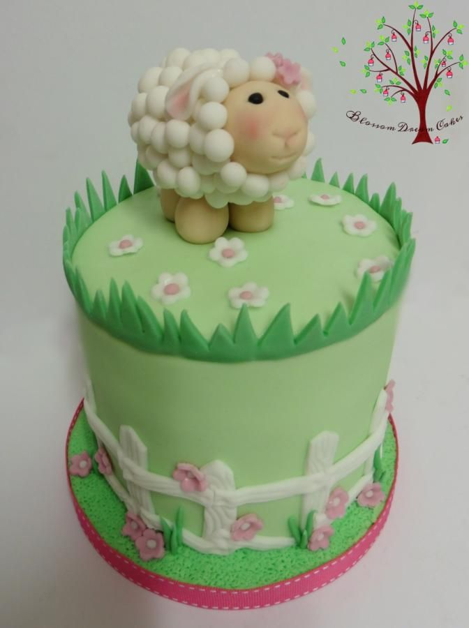 Baaaa Little Lamb By Blossom Dream Cakes Angela Morris