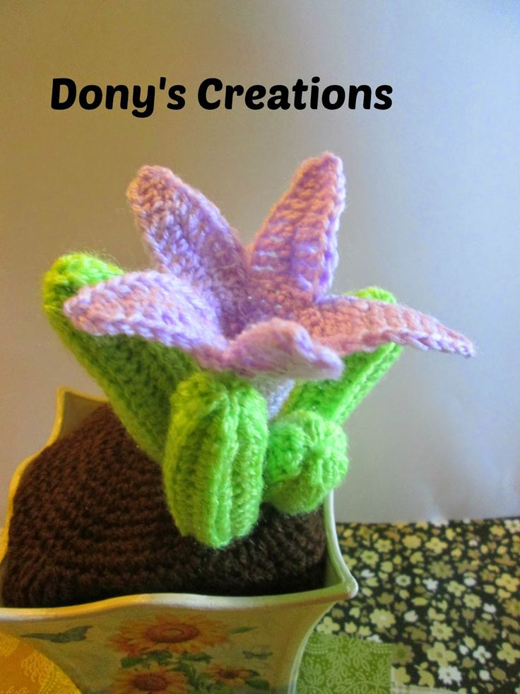 Dony's Creations by Donatella Saralli: Cactus pattern Asclepiadaceae _ free Italian