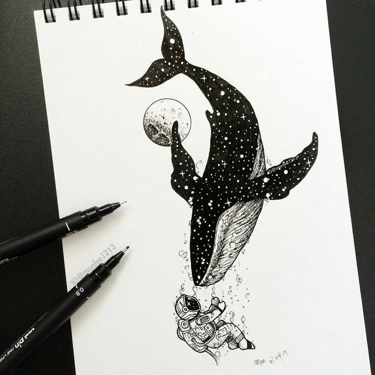Drawing Astronaut Black And White Whale Illustration Sketch