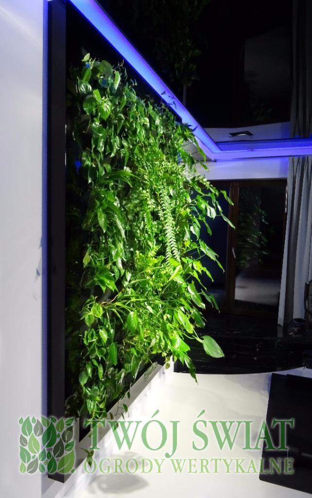 Nowoczesny design w ogrodzie. #verticalgarden #zielonesciany #moderndesign
