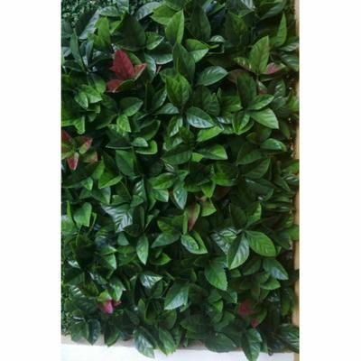 12 plaques carrées clipsables en RED ROBIN Dentelé - Dim dalle : 50 cm x 50 cm - Achat / Vente mur végétal stabilisé - Cdiscount