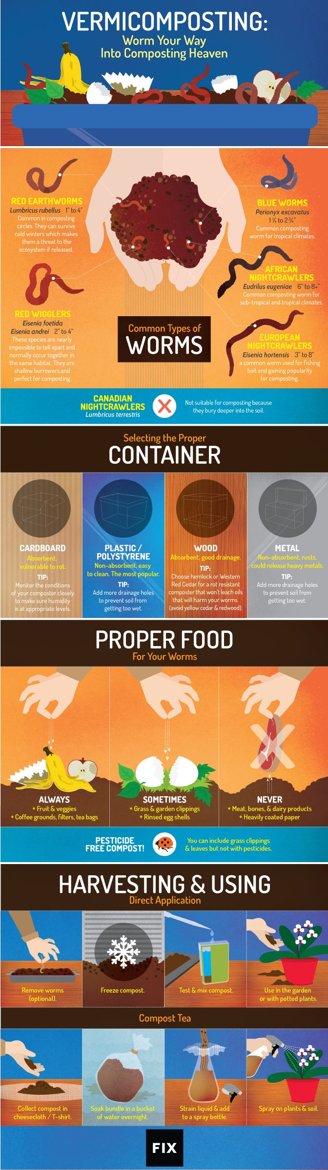 Vermicomposting: Worm Your Way into Composting Heaven #infographic #Composting #Gardening