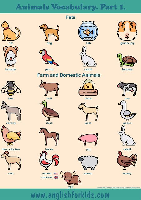 Printable Worksheets to Learn Animals Vocabulary