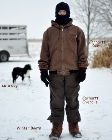 carhartt winter jackets -