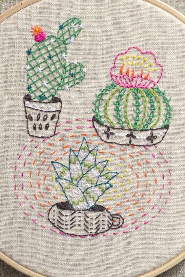 Best images about cactus flower on pinterest cut