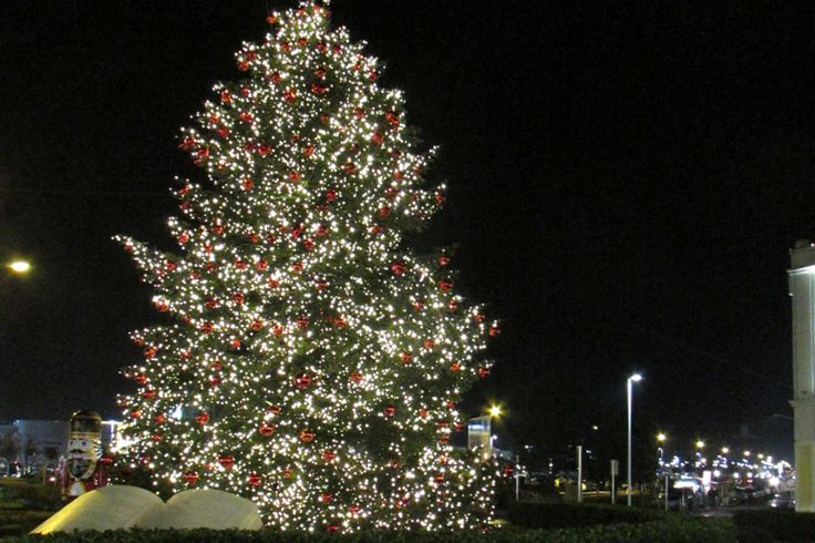 Lights on in Parndorf with the great Christmas tree.  #DesignerOutletParndorf