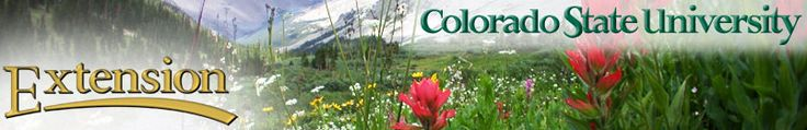 Colorado State U - extension - Vegetable Planting Guide what to plant for fall garden