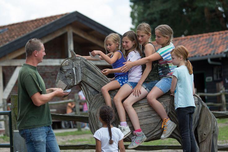 Gezellig, een kinderfeestje op De Paardenkamp!