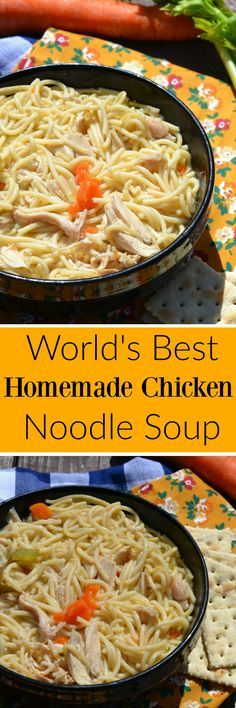 The World's Best Chicken Noodle Soup