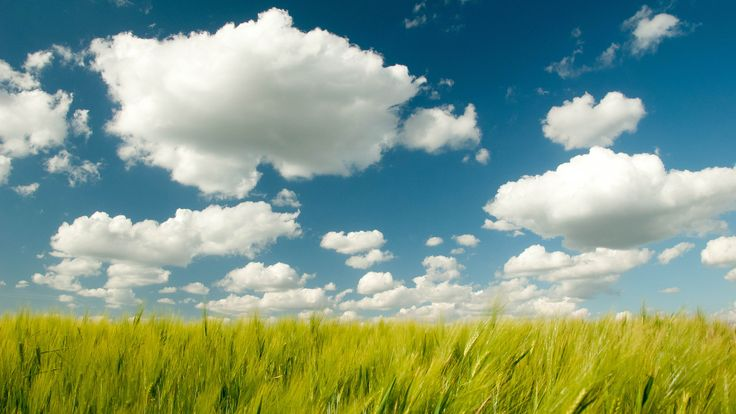 cloud and wheat field farm www.wallpapersu.com/dark-red-blue-clouds-wallpapers/