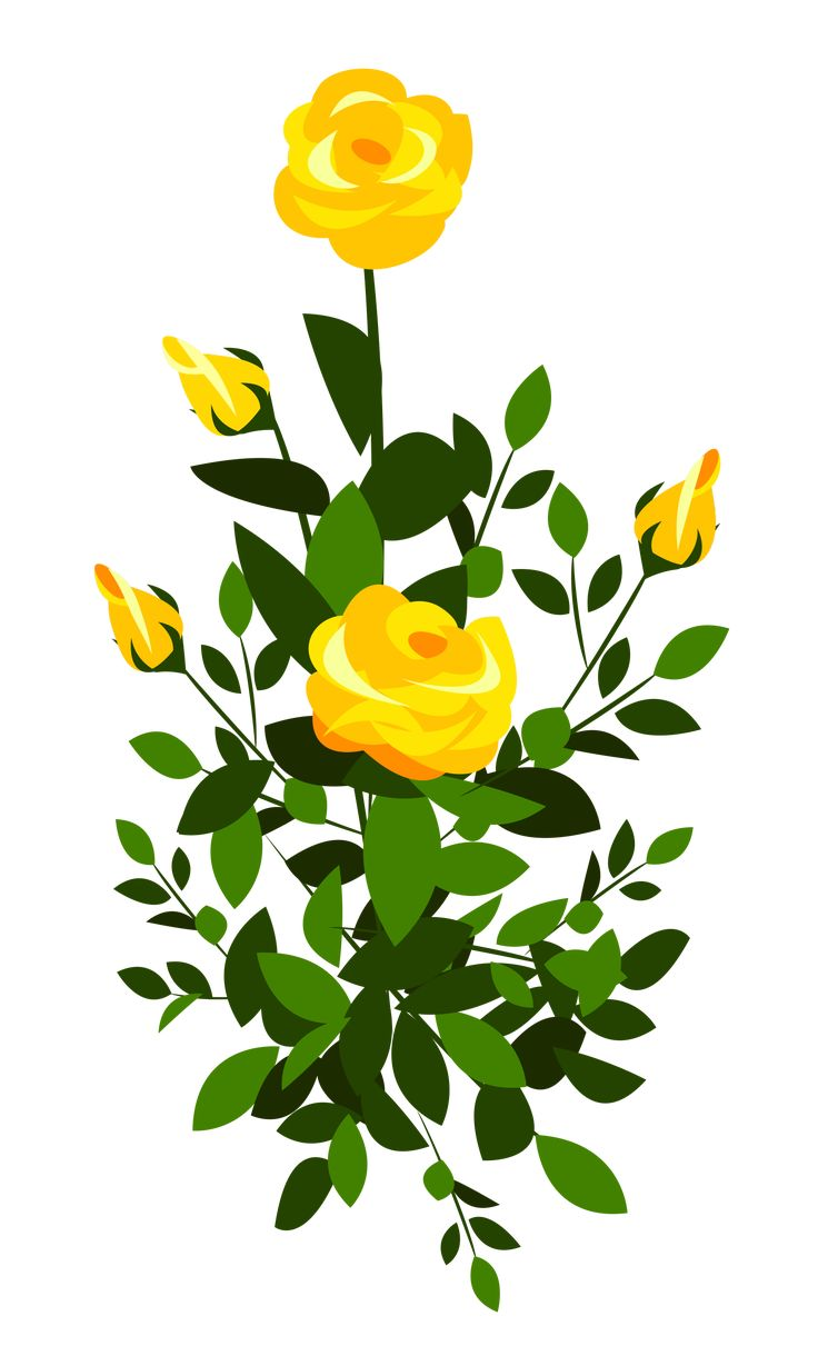 358 best flowers images on pinterest clip art flowers and rose bush clipart images yellow roses flowers dhlflorist Image collections