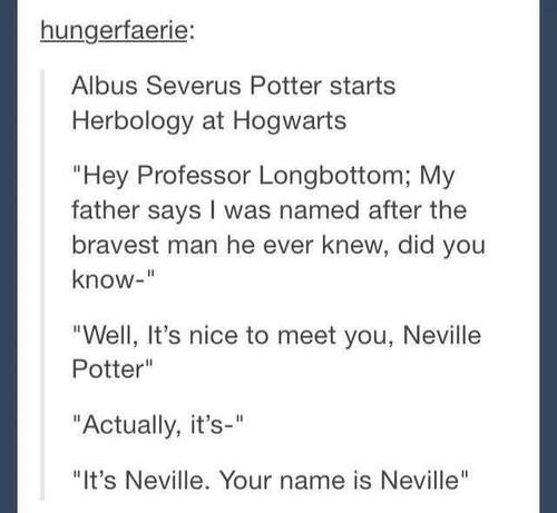 Except we all know that Neville has known Albus Severus his entire life. We all know they vacation together every year.