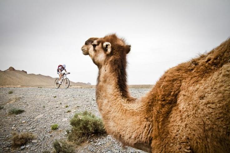 #TitanDesert 2012 #race, #Morocco