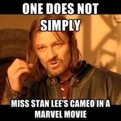 """When Stan Lee comes on in a theater, you can hear everyone whispering """"That's Stan Lee!"""" It gets rather annoying after a while."""