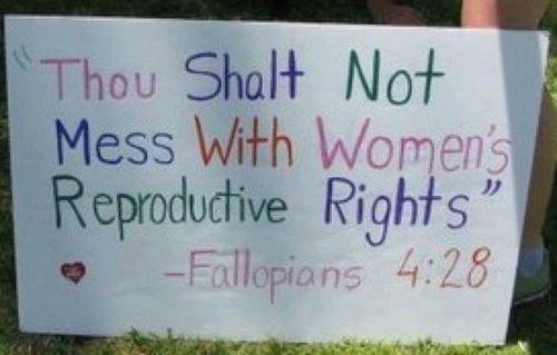 ha!: Books, Fallopian 428, Quote, Funny, Baby Girls, Things, Feminism, Woman Reproduct, Bible Ver